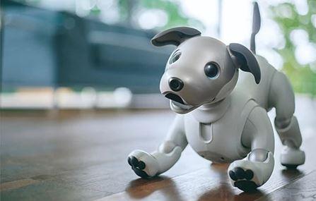 Roboter Hund Sony Aibo