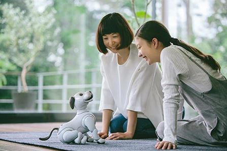 Mutter und Großmutter sprechen mit dem Roboterhund Sony Aibo